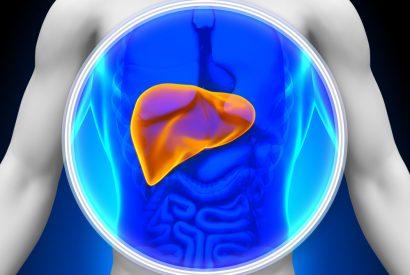 PCB liver disease