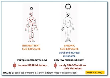 Subgroups of melanomas show different types of gene mutations
