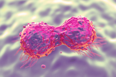 Breast-cancer drug pertuzumab