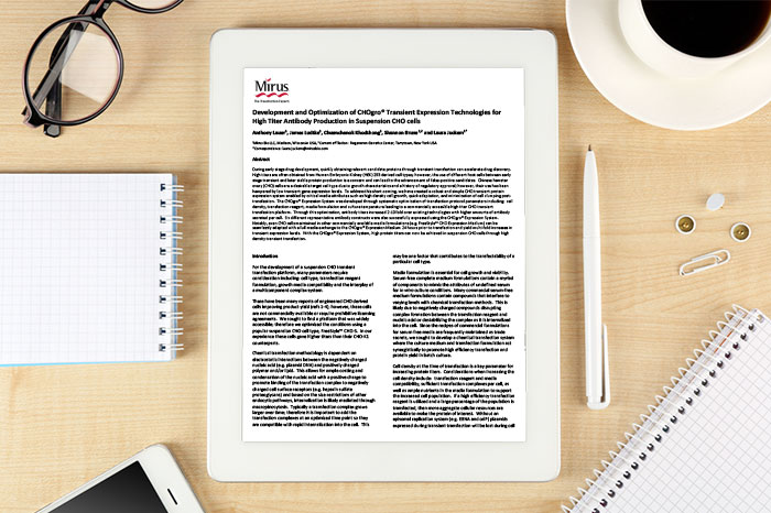 Whitepaper: Development and optimization of CHOgro® transient expression technologies for high titer antibody production in suspension CHO cells