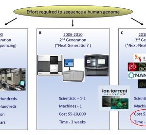 FIGURE 1 The rapid evolution of sequencing technologies. A. First generation Sanger sequencing technology. B. Second 'Next' generation massively parallel sequencing technology (454 Sequencing © Roche Diagnostics) C. Third 'Next-Next' generation single molecule, real-time sequencing technology. In the coming years, second or third generation technologies may develop to an extent where a human genome can be sequenced for a USD 1,000 in a matter of hours