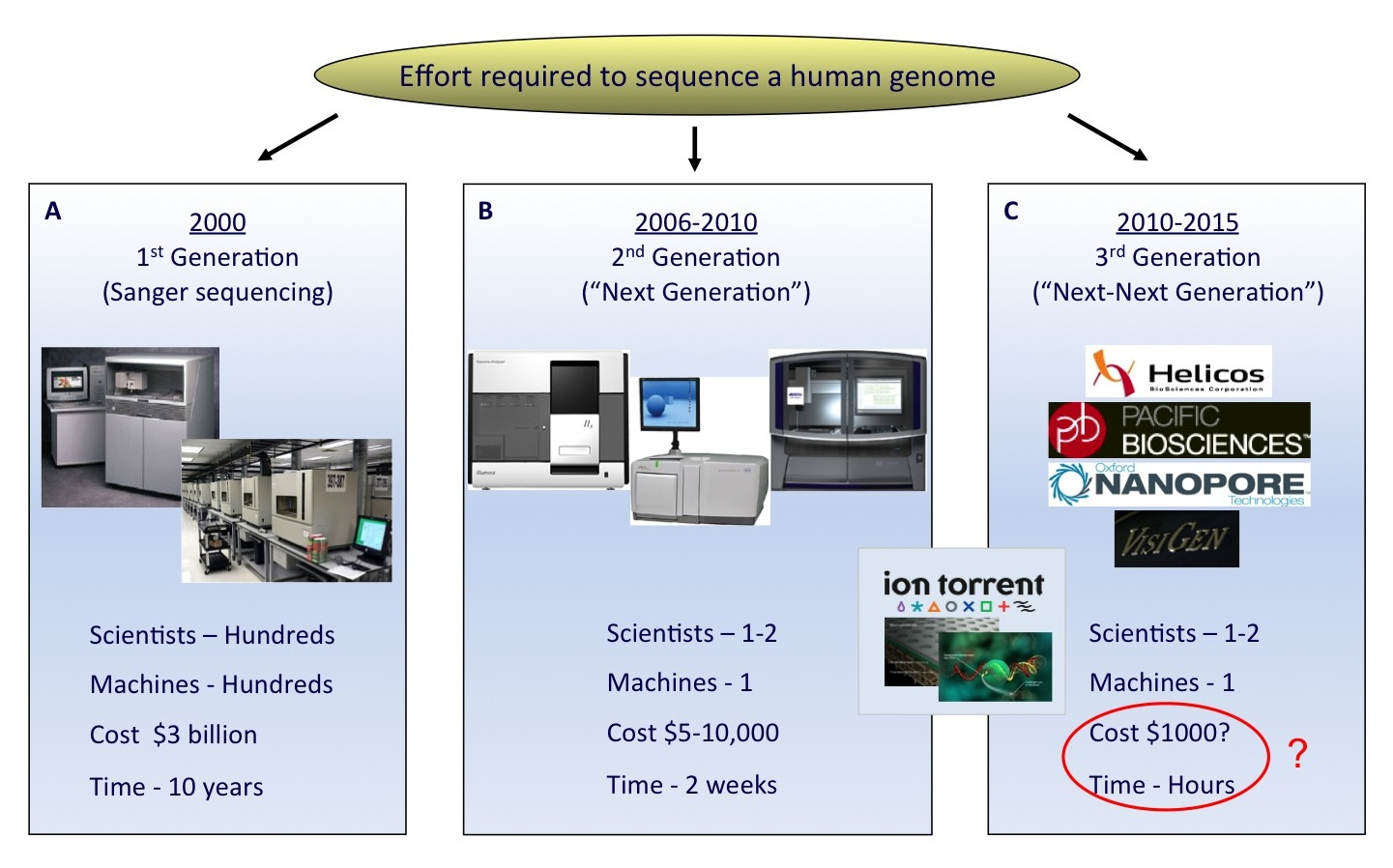next generation dna sequencing technologies biology essay Deciphering dna sequences is essential for virtually all branches of biological  research with the advent of capillary electrophoresis (ce)-based sanger.