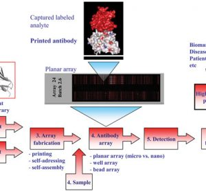 Figure 1 Schematic illustration of the recombinant antibody microarray set-up