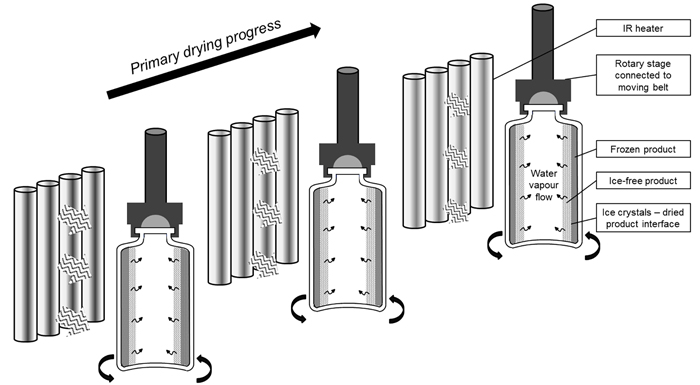 A continuous and controlled pharmaceutical freeze-drying technology for unit doses