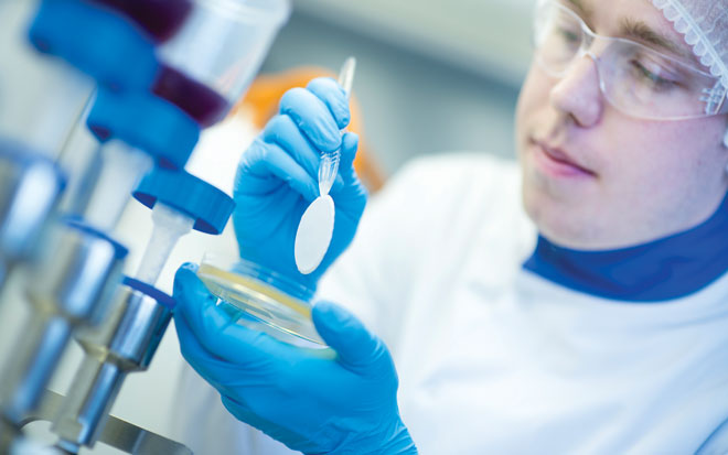 Method suitability in microbiology: understanding complex cGMP guidelines
