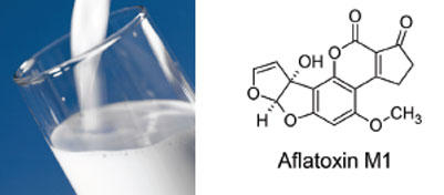 Easy and quick HPLC analysis of Aflatoxin in milk