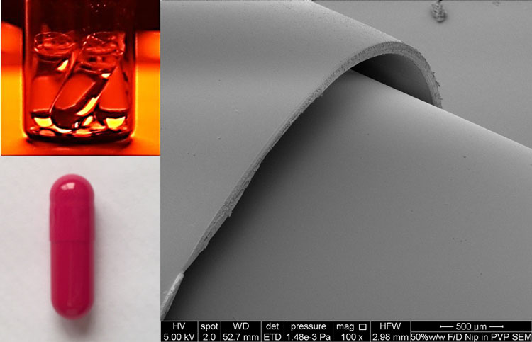 Figure 1: Top left clear gelatin capsules filled with TBA based feed solution of nifedipine, bottom left, Red opaque gelatin capsule to prevent light induced degradation of nifedipine. Photo on the right; Scanning electron microscope (SEM) of freeze-dried capsule bottom and non-freeze dried capsule top, no damage is observed in the structure of the freeze dried capsule bottom.