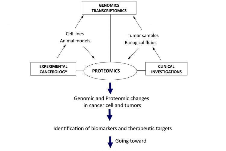 Figure 1Translational and integrative proteomics for the identification of new therapeutic targets in oncology