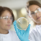 Application note: Microbial limits testing