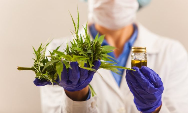cannabis-based drug approved