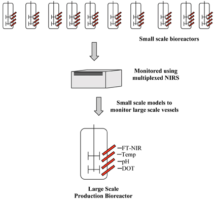 Figure 2: Pictorial representation of the small scale models developed using multiplexed NIRS to monitor large scale vessels