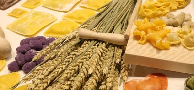 examples of gluten, such as pasta and wheat
