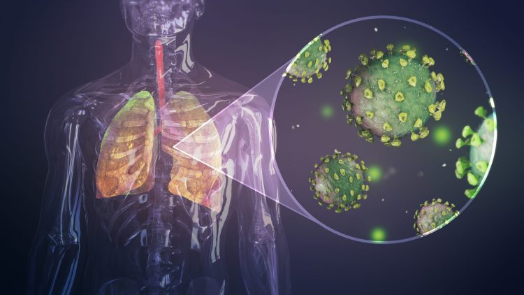 coronavirus particles in the lungs