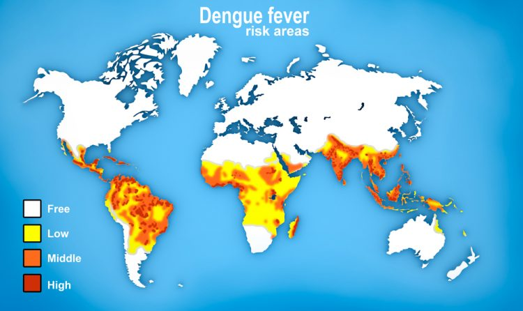 dengue vaccine map