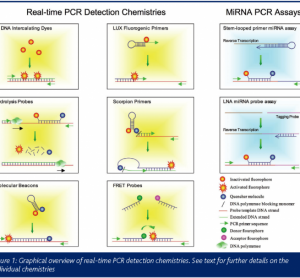 Figure 1: Graphical overview of real-time PCR detection chemistries. See text for further details on the individual chemistries.