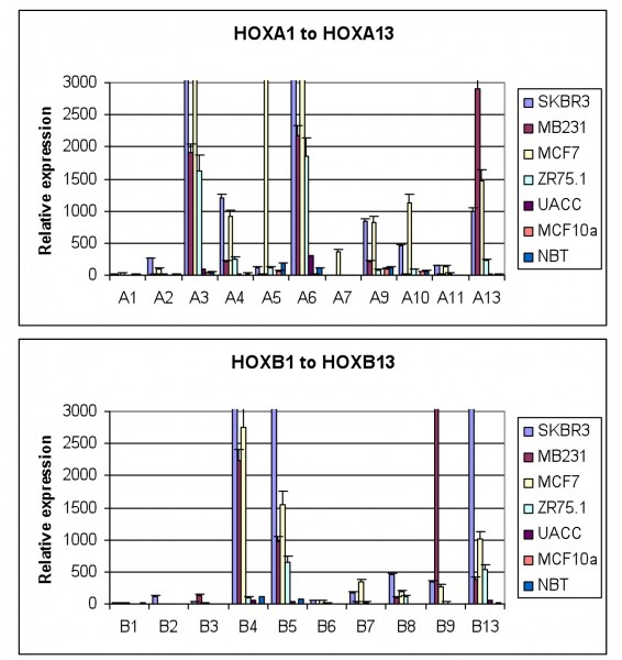 FIGURE 2 HOX gene expression in breast cancer derived cell lines and in normal breast tissue. The expression of each gene was determined by semi-quantitative PCR and is shown relative to the house keeping gene GAPDH (x10000). The values shown are the mean of three independent experiments and the error bars represent the SEM. NBT – normal breast tissue. Everyone of the breast tumour derived cell lines show significant up regulation of many HOX genes whilst there is very little HOX expression in normal breast tissue, or in MCF10a, a cell line derived from non-malignant mammary cells