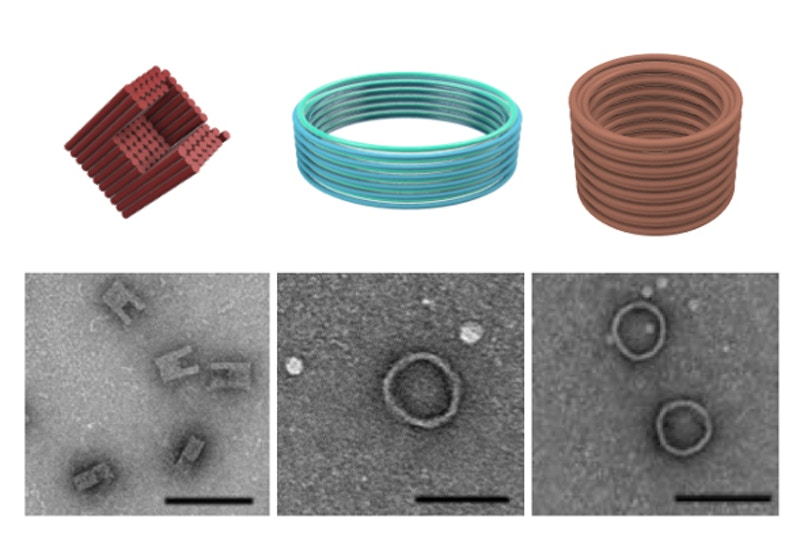 three different nanostructures created by researchers, C-shaped and two barrel shapes