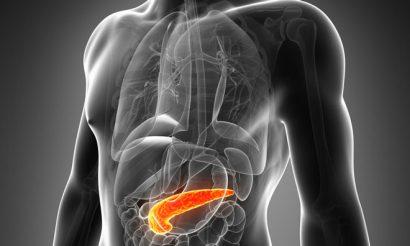 pancreas-abbvie