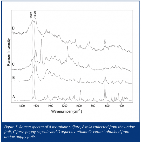infrared and raman spectroscopy schrader bernhard
