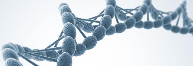 Pharma Webinar: Gene editing partnerships to enhance drug pipeline productivity