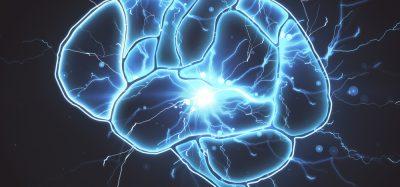 Brain - depression and antidepressants
