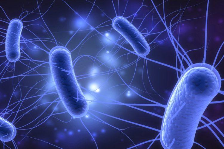 FDA approves new antibacterial drug