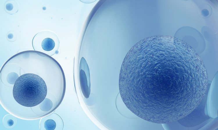 Blue stem cells
