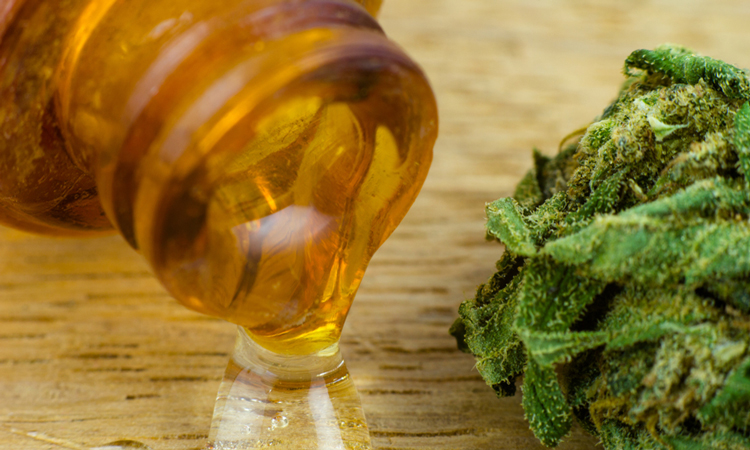 Cannabis and cannabis oil
