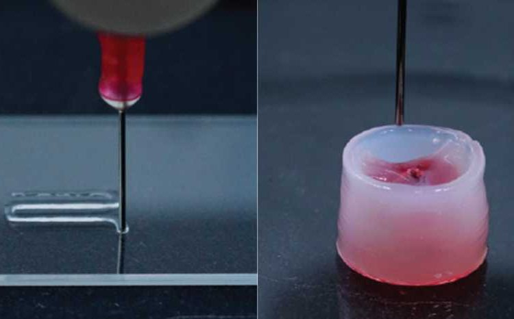 Images of the carrier ink flowing through the 3D printer nozzle and a shape that had set after being printed